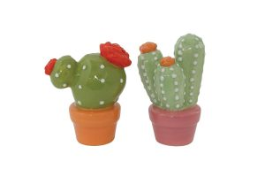 Cacti with Pot