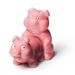 Naughty Pigs