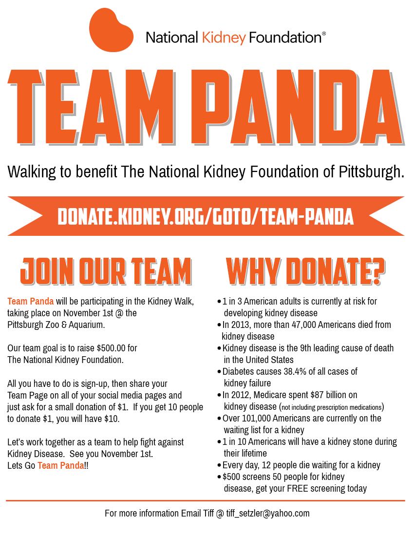 Team Panda Flyer
