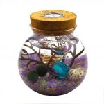 OMEM Aquarium Kits-Living Moss Ball